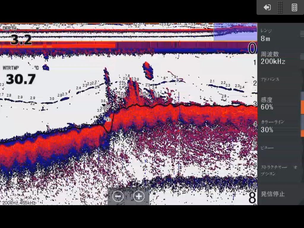 琵琶湖南湖木の浜の浚渫エッジ付近ギルとウィードが映る魚探画像