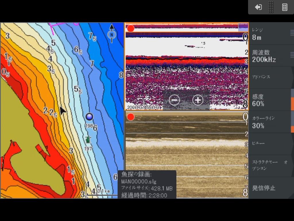 琵琶湖真野川河口北に生えるウィードとギルを紹介した魚探画像