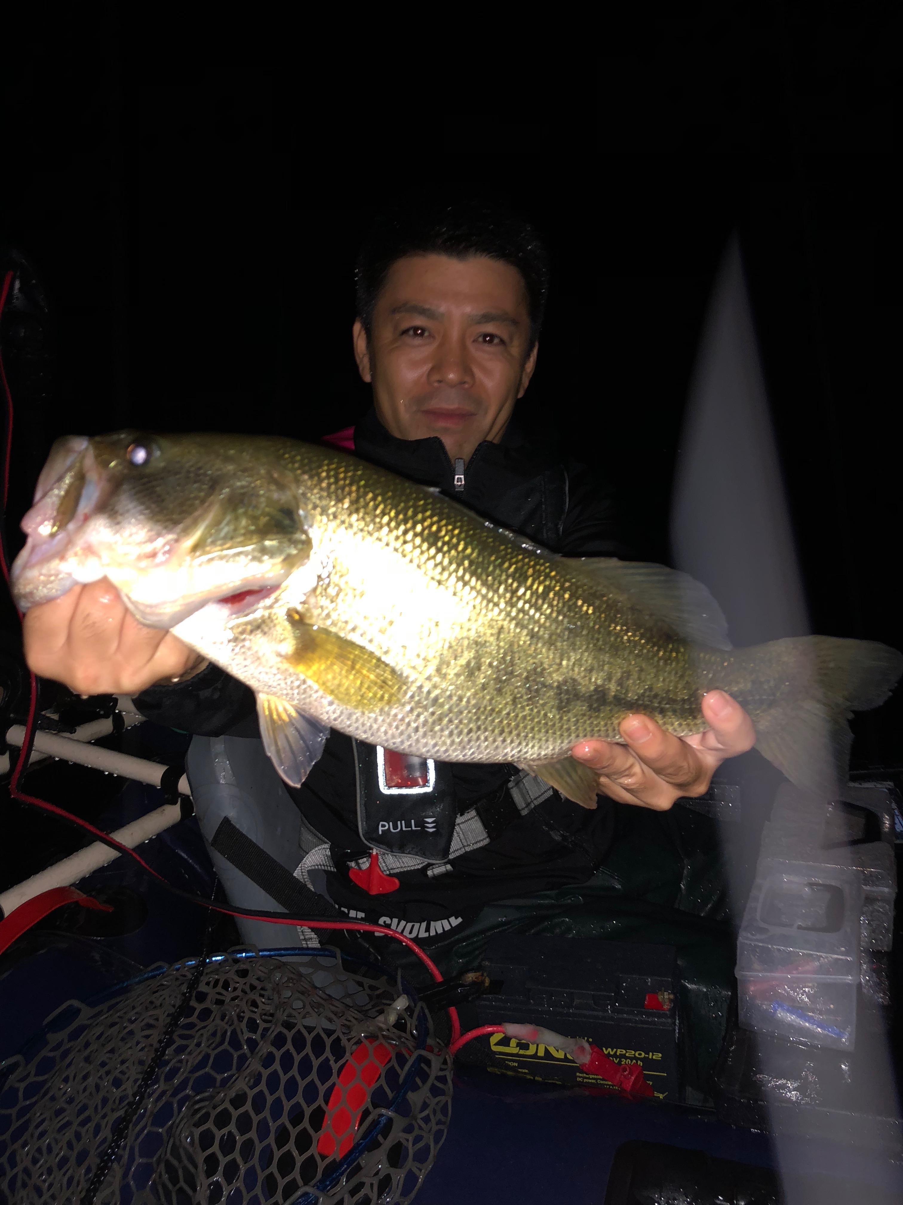 琵琶湖木浜でネコリグで釣れた50UP画像