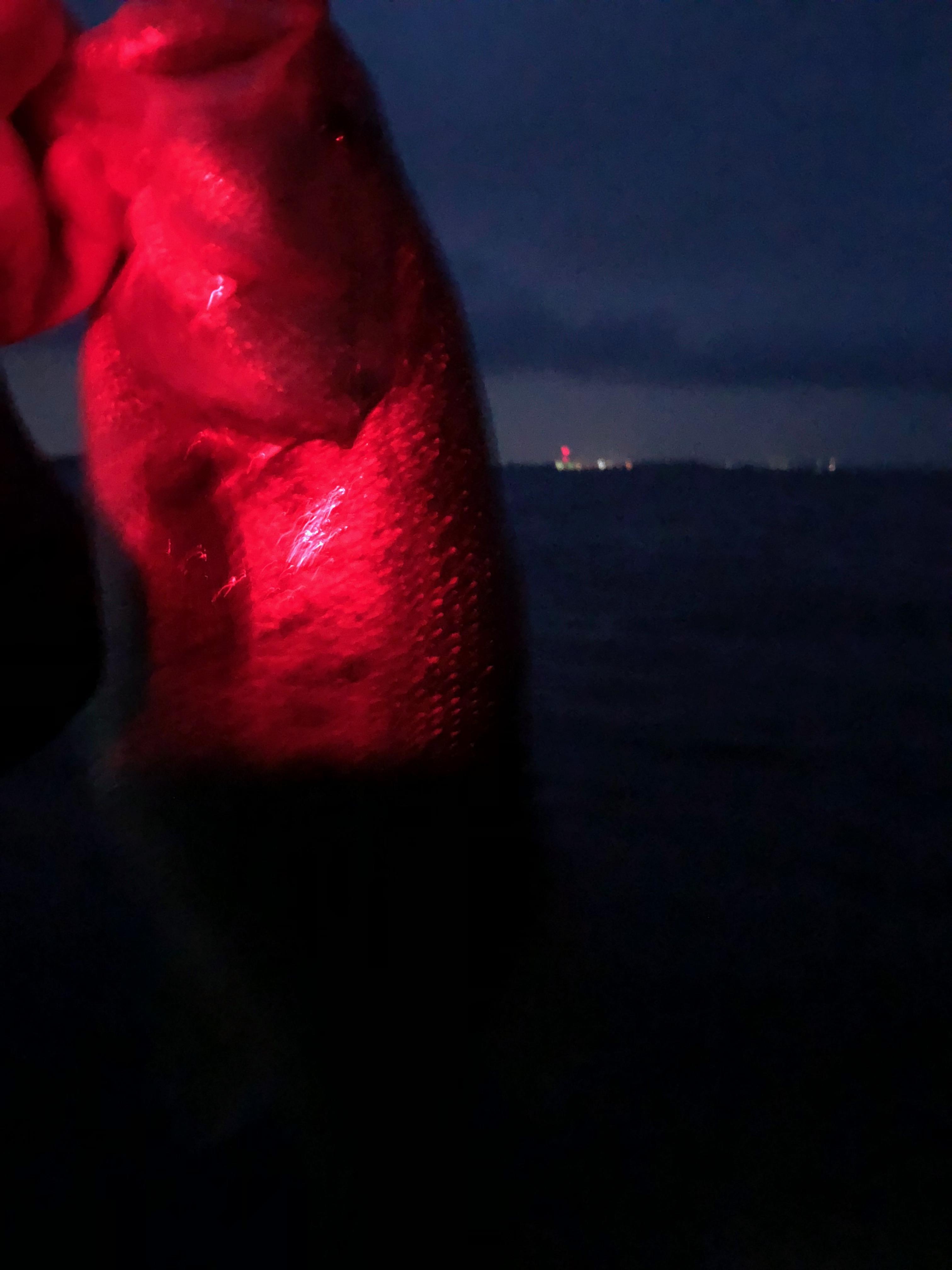 南湖アノストで釣った40UP画像2