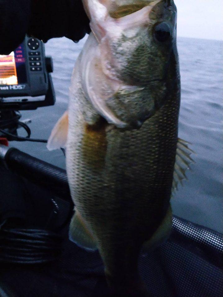 琵琶湖冬にメタルバイブで釣ったデカバス