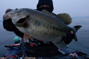 北湖東岸のデカバス釣果