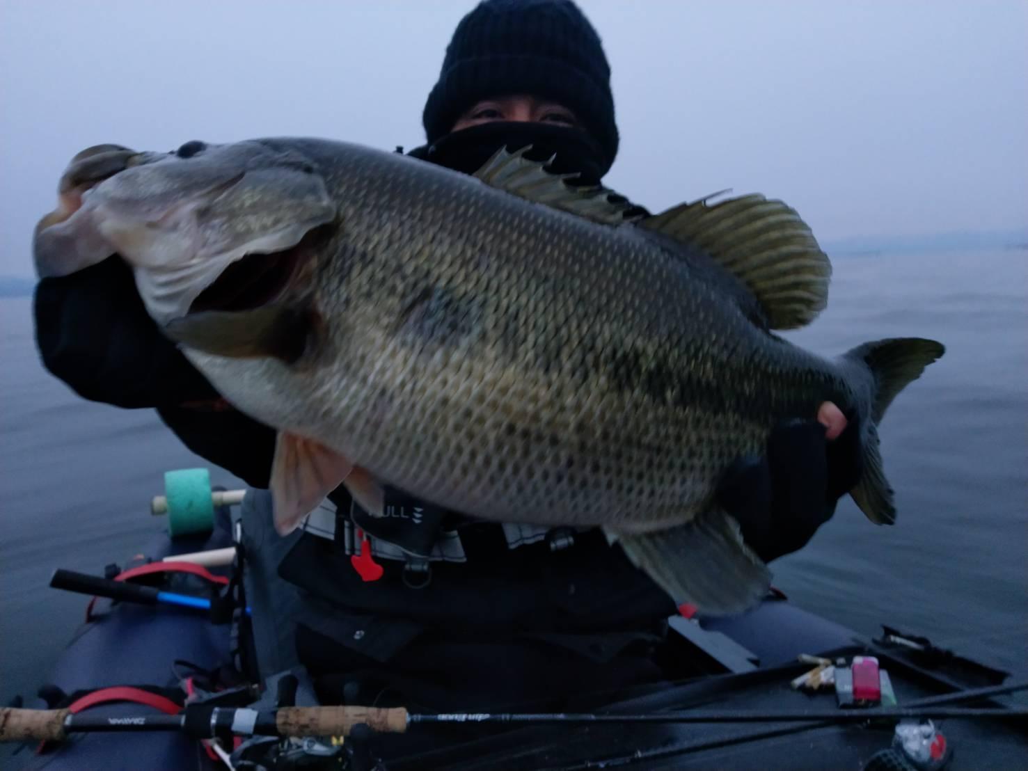 琵琶湖メタルバイブで捕獲した57cmデカバス